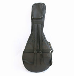 padded arabic oud gig bag