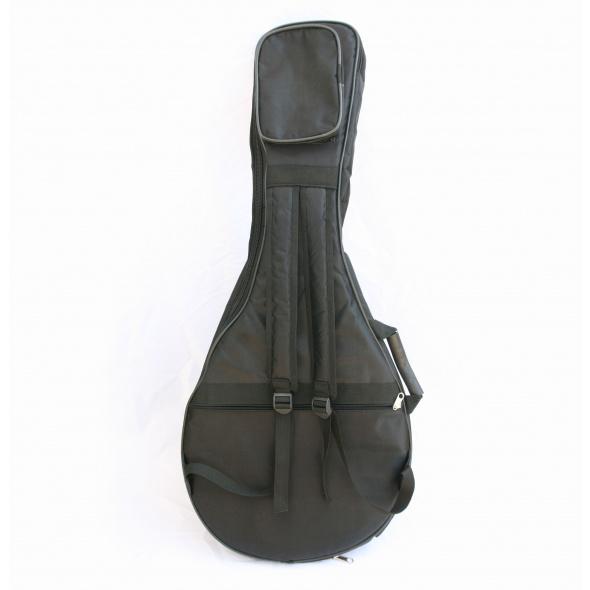 padded arabic oud gig bag
