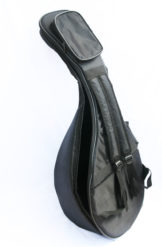 gig bag for arabic oud