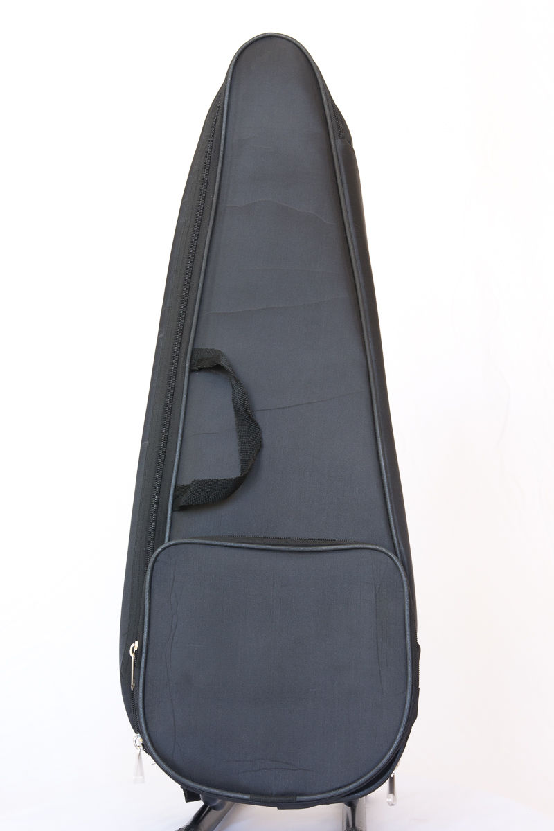Kamancheh Kamanche case padded with back straps