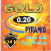 Professional Turkish long neck saz 0.20 PYRAMID GOLD